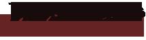 MediaBus Marketing Group Logo